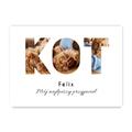 Plakat ze zdjęć do ramki ikea 50x70 dla właściciela kota