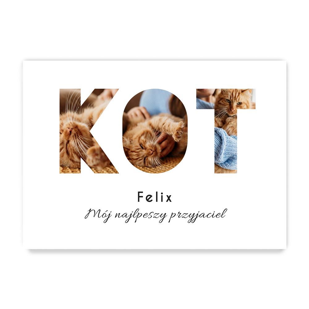 Plakat ze zdjęciami dla właściciela kota A3