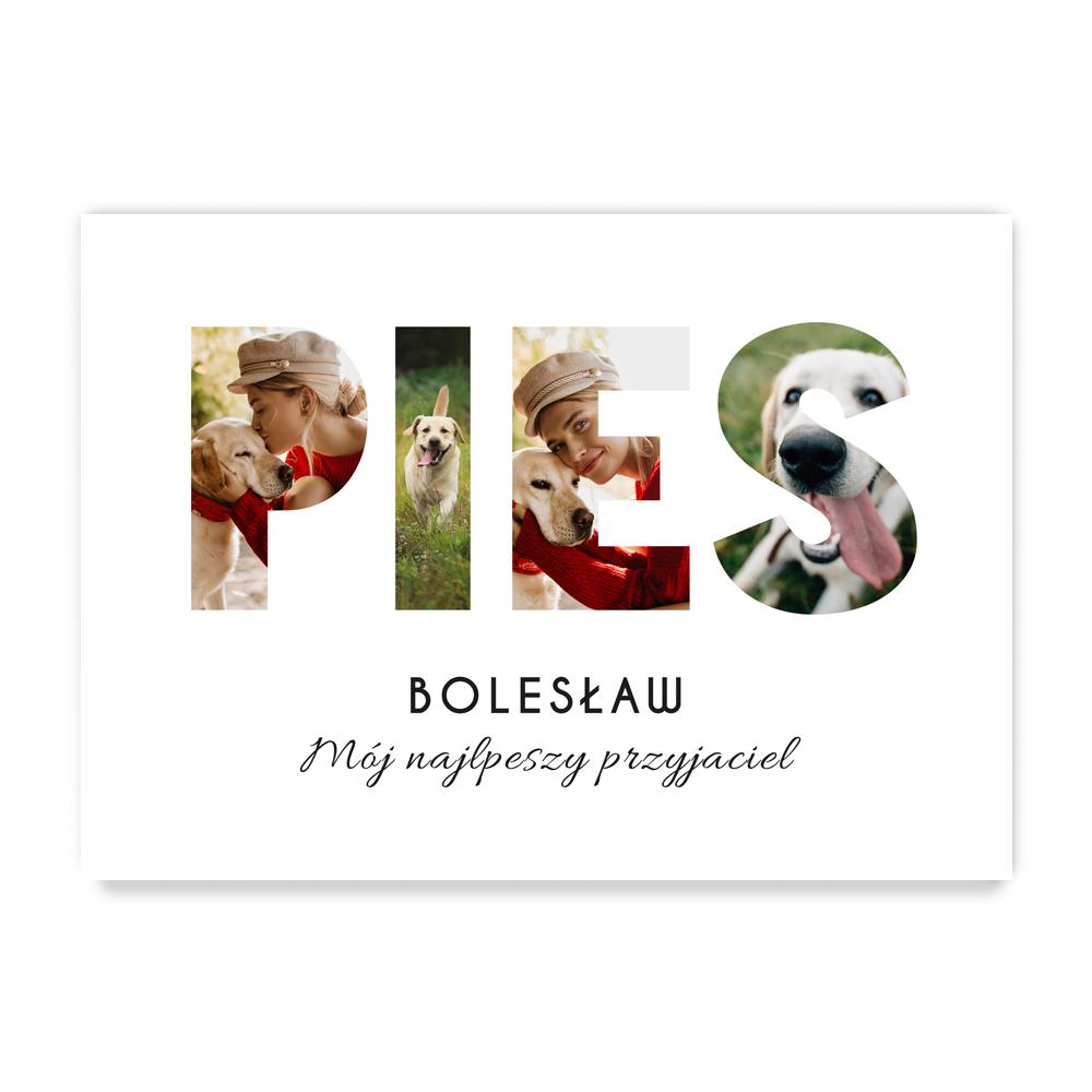 Plakat personalizowany ze zdjęciami dla właściciela psa A2