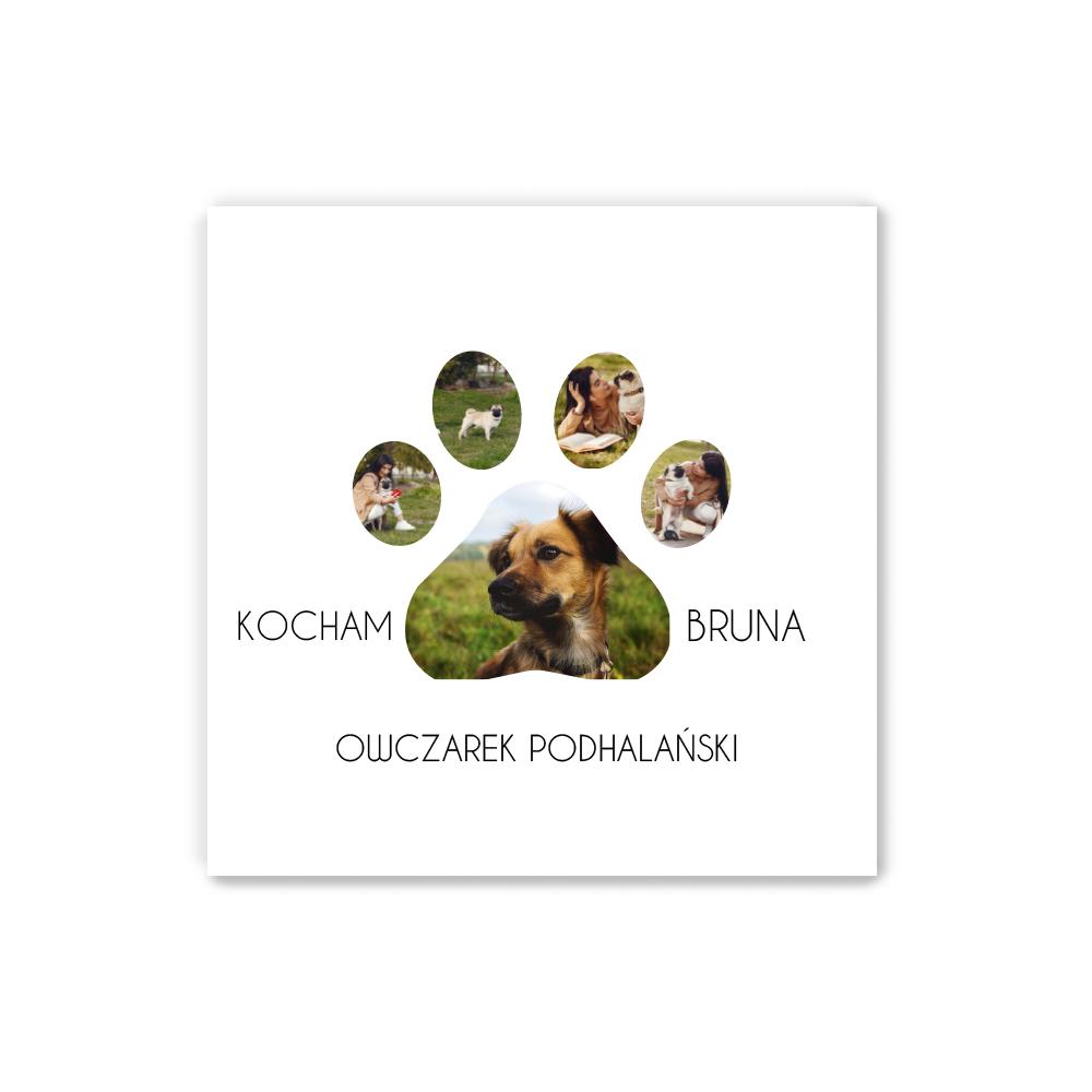 Personalizowany plakat 30x30 ze zdjęciem pieska kotka dla właściciela zwierzaka